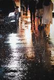 비오는 수요일 ..