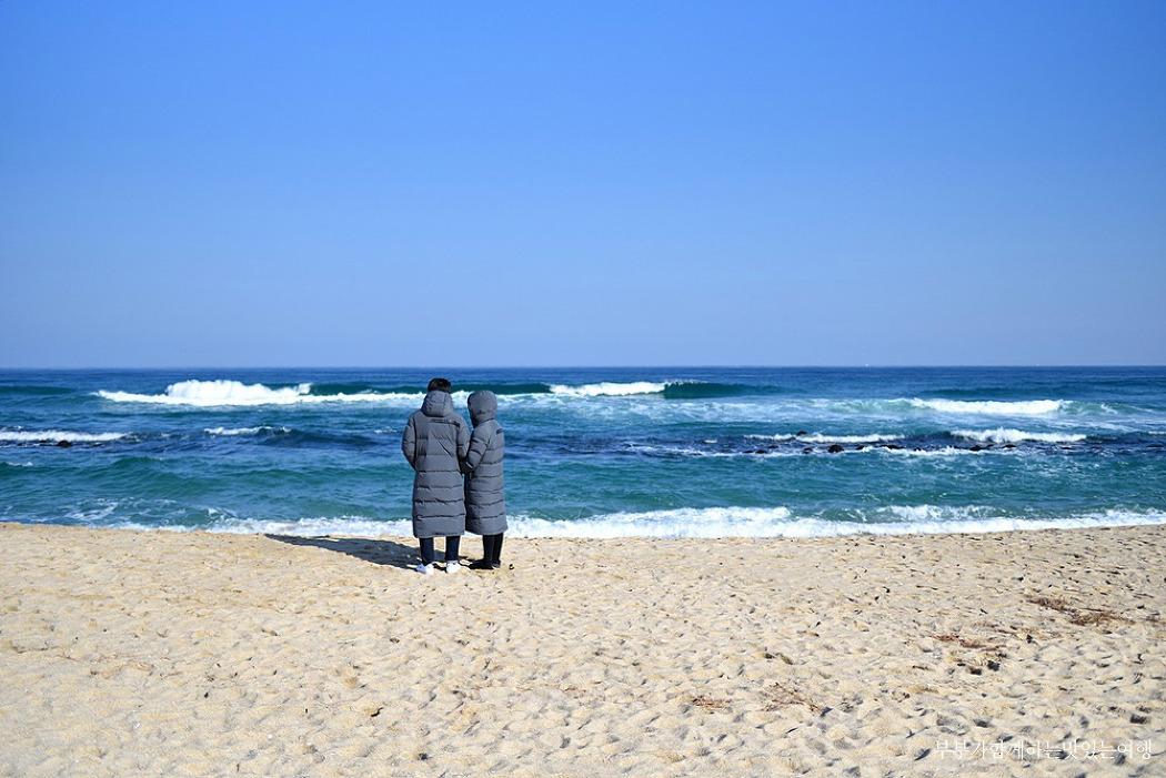 [강릉여행] 겨울바다의 매력과 감성을 가득 지닌 곳, 강릉 강문해변