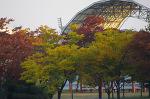 안산 화랑유원지의 가을
