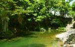 홍천 찰옥수수축제가 열리는 홍천에서 홍천은행나무숲과 삼봉자연휴양림을 가보자