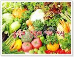 음식과 건강의 기초 지식