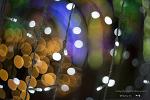 울산대공원 장미원 빛축제 [펜타곤 렌즈와  헬리오스, 오반사 렌즈의 빛망울]