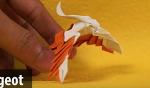 포켓몬 종이접기 피죤투