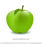 사과 일러스트 이미지