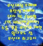 부산상가매매 부산대상가매매 월2000만 인수35억 부산대메인도로