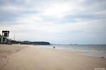 대천해수욕장 |보령 가볼만한곳