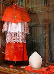 교황, 추기경? 신부? 주교?? 가톨릭의 성직이 궁금해?? :: 깜장천사의 유럽 종교문화 이야기 (9)