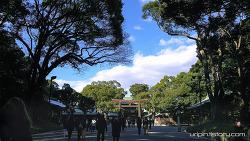 Meiji Jingu, 明治神宮 (4K)