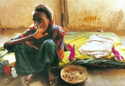 먹는 인간 : 먹는 존엄권