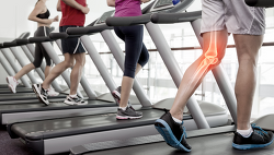 운동이 뼈를 튼튼하게 하지 않는다