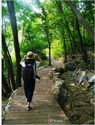 곤지암 화담숲, 샅샅이 훑어보기 [4편]