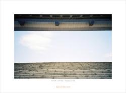 [Kodak Gold 400][Olympus XA] 국립중앙박물관
