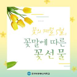 꽃의 계절 5월, 꽃말에 따른 꽃선물