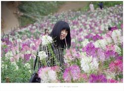 올림픽공원 들꽃마루 풍접초 향기 속에서 - 영원