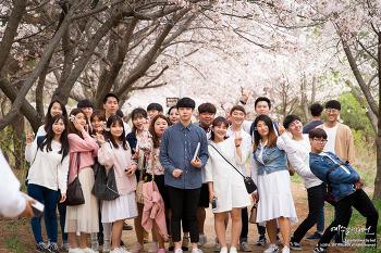 2017 인천공항교회 청년부 Jesembler 벚꽃구경