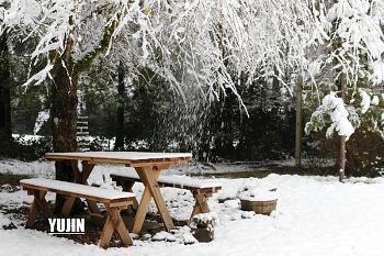 첫눈 온날- 설경이 장난아닌 우리집 겨울 풍경