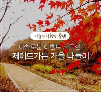 걷기 좋은 계절 가을! 제이드가든에서 가을의 향취를 느껴보자