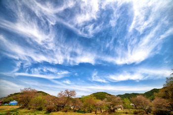 구름구름하다