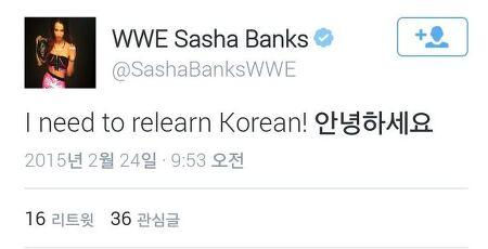 WWE 슈퍼스타 샤샤 뱅크스 응원합니다!!