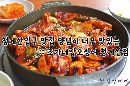 청계산입구 맛집 양념이 너무 맛있는 :: 조가네갑오징어 청계산점 후기!