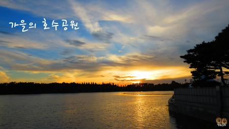 [가을축제추천] 일산호수공원의 가을빛 풍경