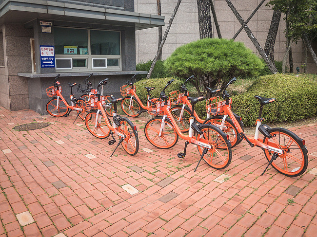 수원시 친환경 공유 자전거 모바이크(mobike) 이용기