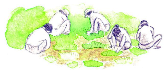 습지에서 피어난 생명의 기록(봄)-『습지 그림일기』