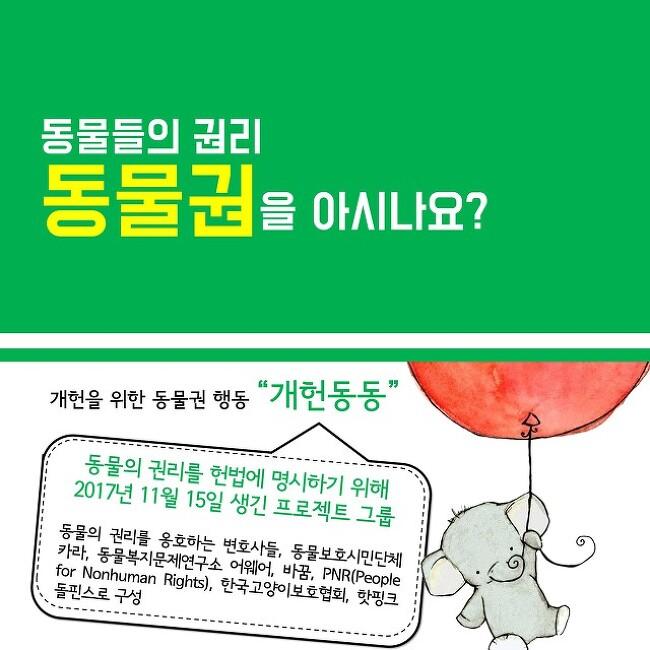 동물들의 권리 '동물권'을 아시나요?