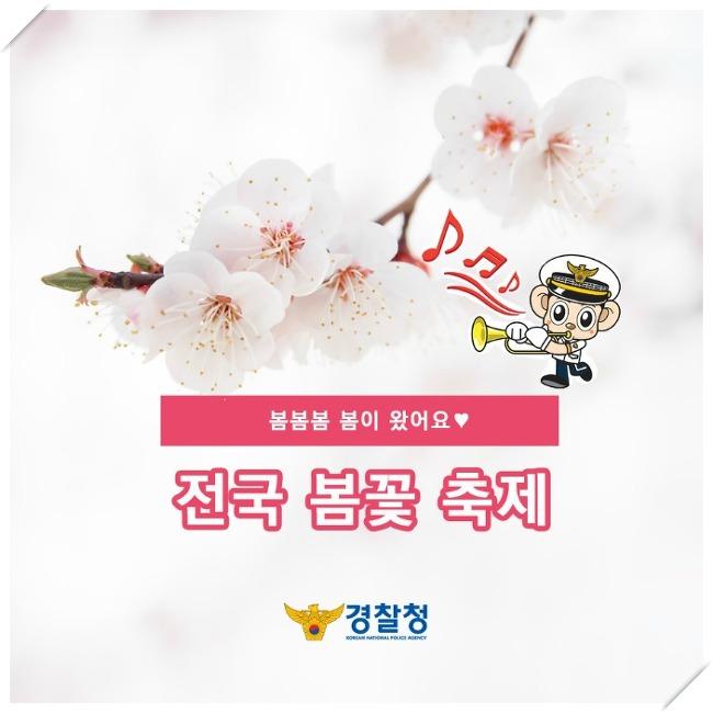 봄이 왔어요!  전국 봄꽃 축제 총정리
