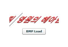 171픽셀 16bit BMP