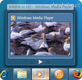 Windows Media Player 12 (in Taskbar)