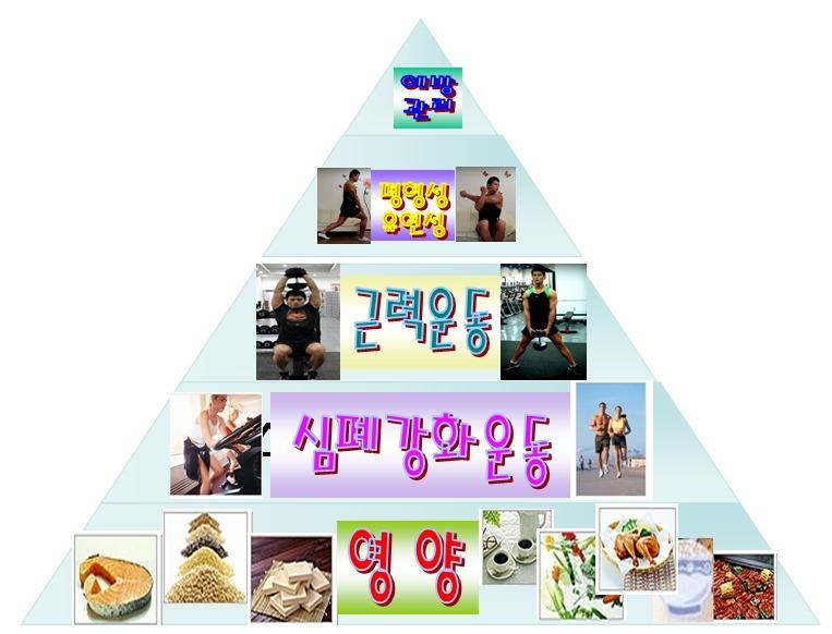 체중감량을 위한 맞춤 피라미드