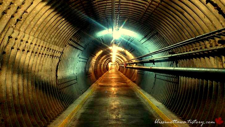 벙커 터널입니다