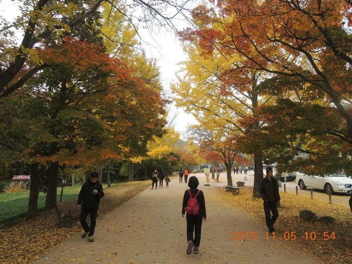 선운사 우리나라 최고의 가을 단풍 여행 고창여행지