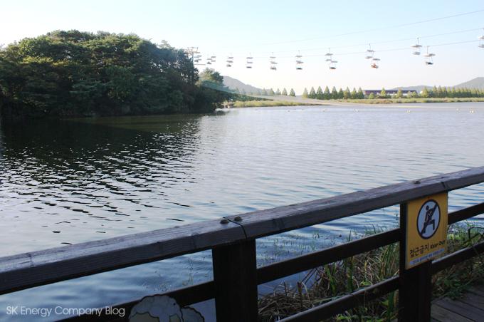 서울대공원의 호수 이미지입니다.