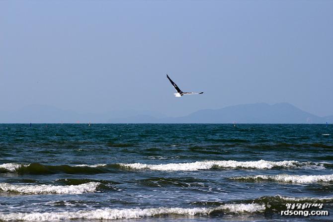 청포대, 청포대 해변