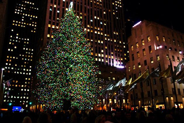 10월 굿마켓, 10월 굿마켓 송도 벼룩시장, 10월굿마켓 할로윈 스페셜, LED전구, 굿마켓, 굿마켓 송도 벼룩시장, 그린 시티, 그린시티, 뉴욕, 뉴욕 센트럴파크, 뉴욕 파란 자전거, 뉴욕시티, 단열 창문, 레트로피트(retrofit), 레트로피트(retrofit) 프로젝트, 록펠러, 록펠러센터 크리스마스트리, 맨해튼 파란 자전거, 무당벌레, 센트럴파크 뉴욕, 송도IBD 페이스북, 송도국제도시, 송도국제도시 자전거, 송도국제도시 자전거 대여, 송도자전거, 시티바이크, 에너지 효율성, 엠파이어 스테이트 빌딩, 엠파이어스테이트빌딩, 재활용, 진딧물, 친환경 도시, 친환경 도시 송도국제도시, 친환경 송도, 친환경 해충 퇴치, 친환경도시, 친환경도시 송도IBD, 친환경도시 시리즈, 크리스마스 트리, 할로윈 굿마켓, 할로윈스페셜 10월굿마켓, 해비타트,
