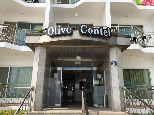 양양 하조대 올리브 콘텔