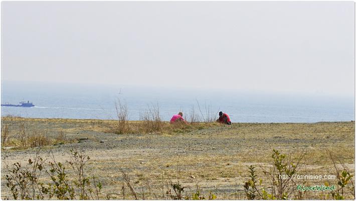 나물캐는 봄풍경