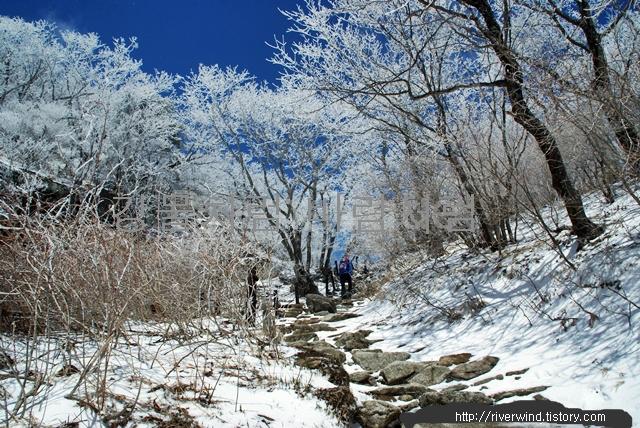 지리산 천왕봉(智異山 天王峯)등산 사진후기(4)