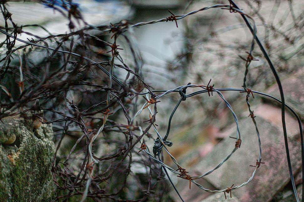녹슨 철가시망 사진