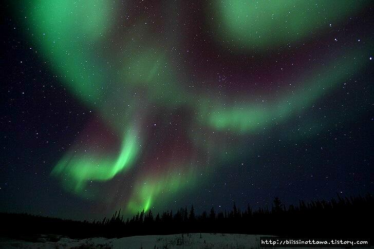 캐나다 옐로나이프 오로라입니다