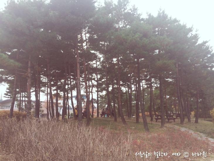 서울 창포원, 데이트 코스 추천