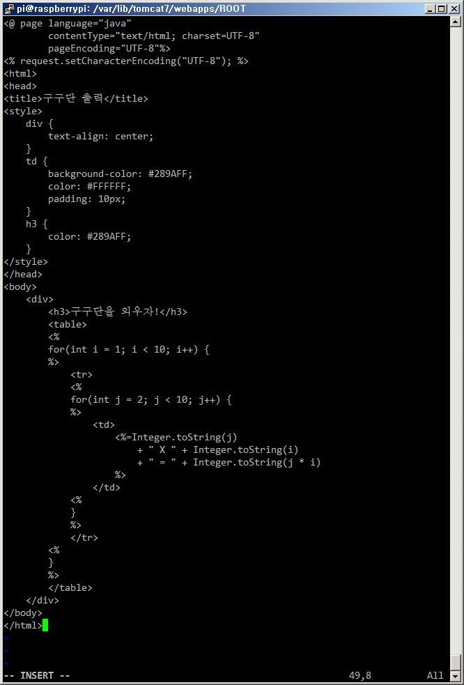 라즈베리파이 Raspberry Pi 아파치 톰캣 서버 Tomcat Server 설치방법 JSP 서블릿 컨테이너 자바 웹서버 구축