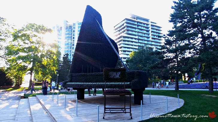 캐나다 피아니스트 허버트 굴드입니다