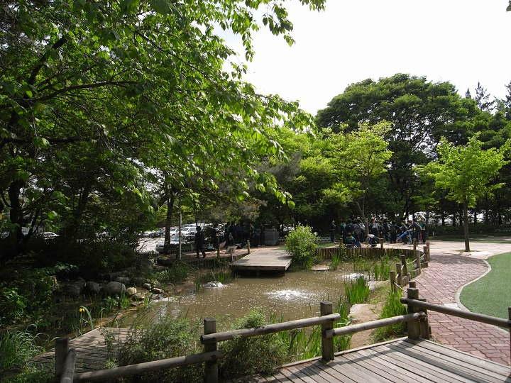 화랑초등학교 생태연못
