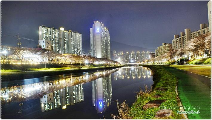 아름다운 강안의 야경