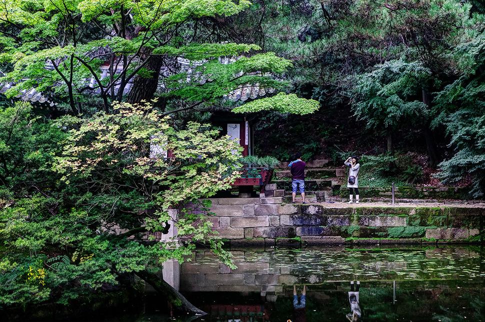 창덕궁 후원(비원)에서 가족사진 담고있는 모습이 담긴 풍경사진.