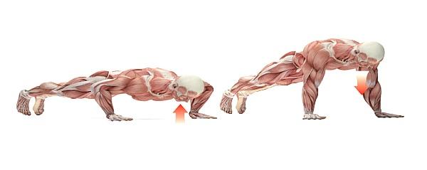 운동 상식, 운동 중 올바른 호흡법은?