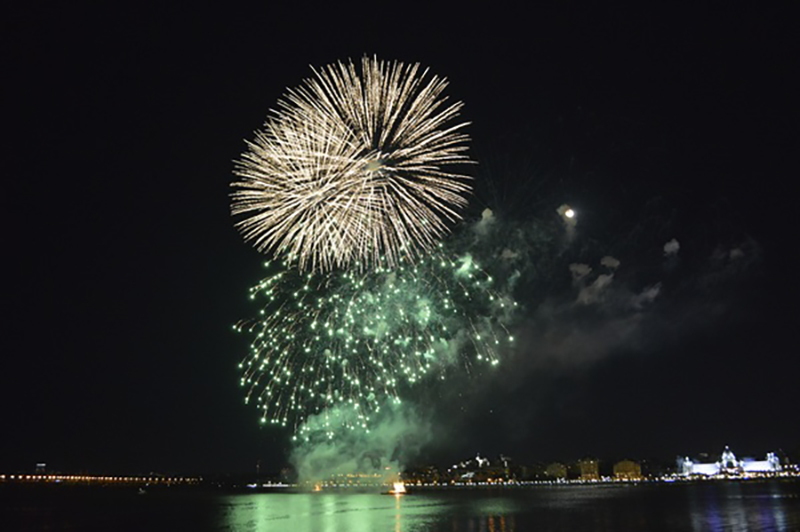 Festive night beautiful fireworks HD picture 07